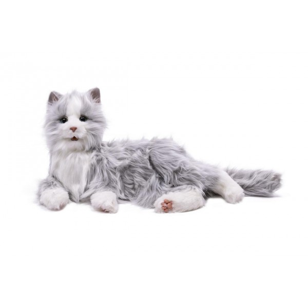 Chat interactif - gris