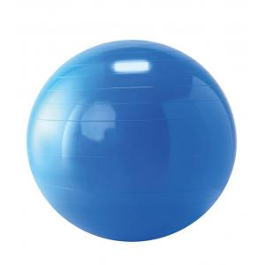 Gymnic - Ballon de réeducation 65 cm bleu